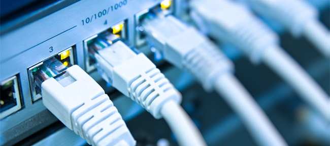 closeup of ethernet cables